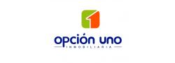 OPCION 1