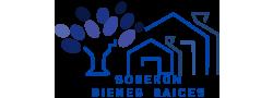 asesoria inmobiliaria construccion ampliacion remodelacion diseno caminos alumbrado publico oficina y hogar servicios juridicos seguros automatizacion de casas videovigilancia y seg