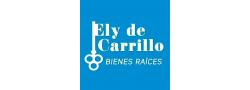 elydecarrillobr.com