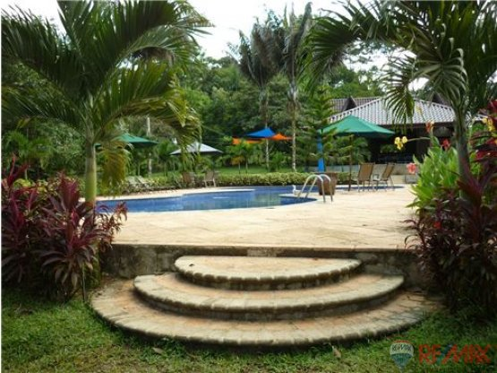 Beautiful Land for sale. Sarapiqui. Heredia.