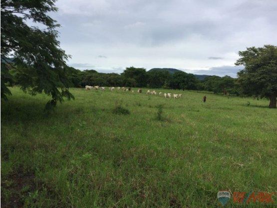 SAN RAFAEL DE OJO DE AGUA LAND/LOT