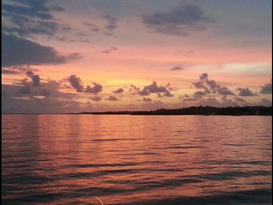 Globo de Mar, Bocas del Toro