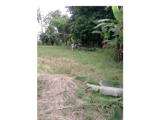 Venta de Terreno en Bugaba, Chiriqui, Panama