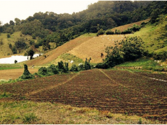 Terreno en Venta, Bugaba Cerro Punta, Boquete