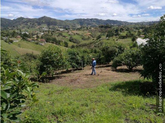 Venta de lote en via a San vicente, Antioquia