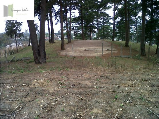 TERRENO DE 67,000Vrs ZONA 16 - CERCA/CLUB DE GOLF