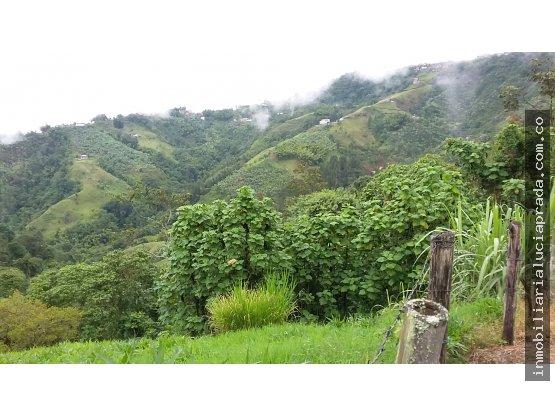 Venta finca en Morrogacho, Manizales