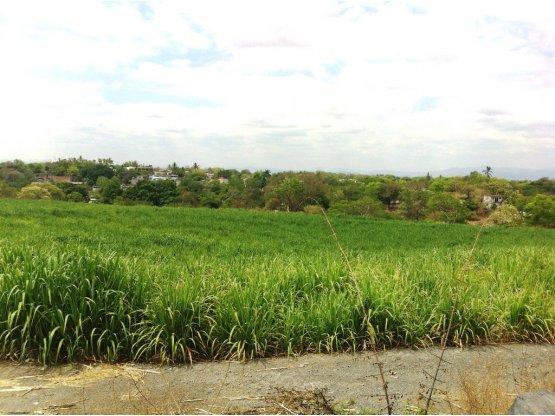 Terreno en venta Atlacahualoya, Axochiapan, Mor.