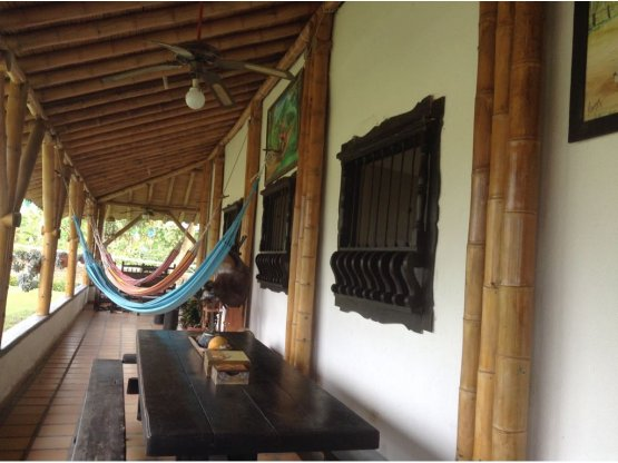 VENDO FINCA EN QUIMBAYA- QUINDÍO