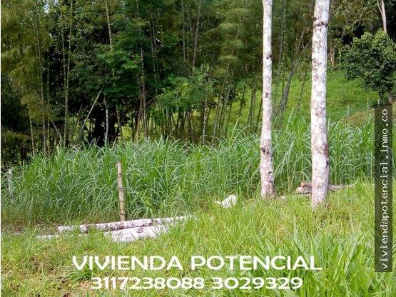 FINCA NORCASIA 4 HECTAREAS