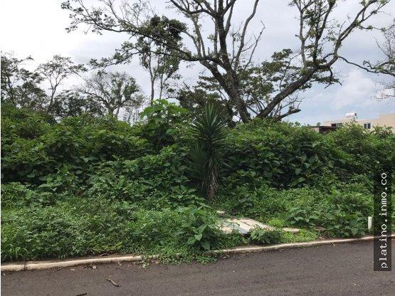 Terreno Jardines de San Isidro