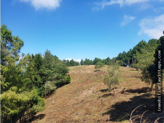 Terreno  km. 25 cruce a Santa Elena Barillas