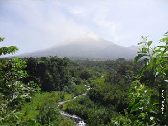 ¡CityMax Antigua Vende Terreno Chimaltenango!