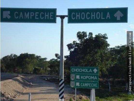 V103 TERRENO SOBRE CARRETERA DE 110 HAS CHOCHOLA
