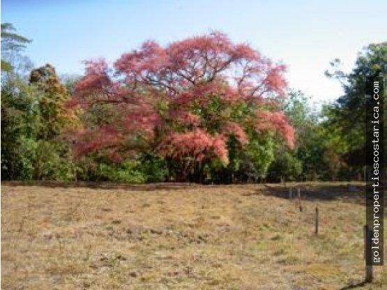 Se vende Finca para ganado Guanacaste Costa Rica