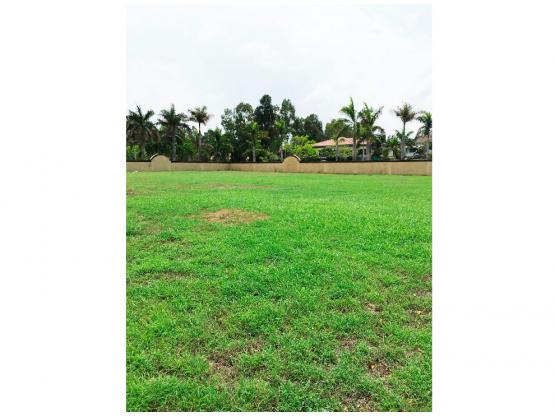 Terreno a la venta en Balmoral - Costa del Este