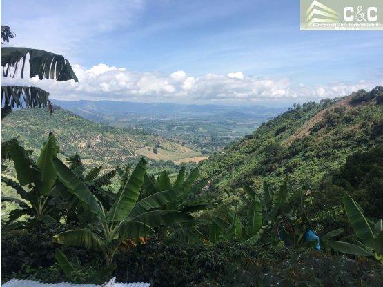 Finca en Venta en Buenavista, Quindio 4473
