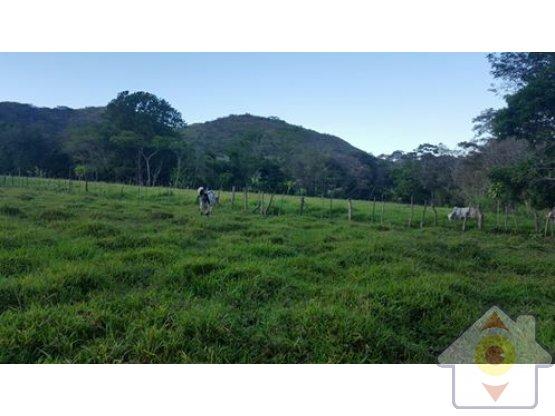Terrenos en San Pablo de Turrubares - Inversión