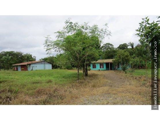 Venta de Terreno Pital – San Carlos