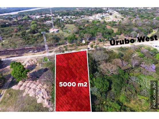 TERRENO 5.000 M2 EN EL URUBO