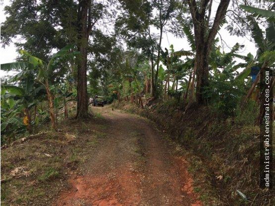 Gran Finca Santa Rosa de Cabal Pereira