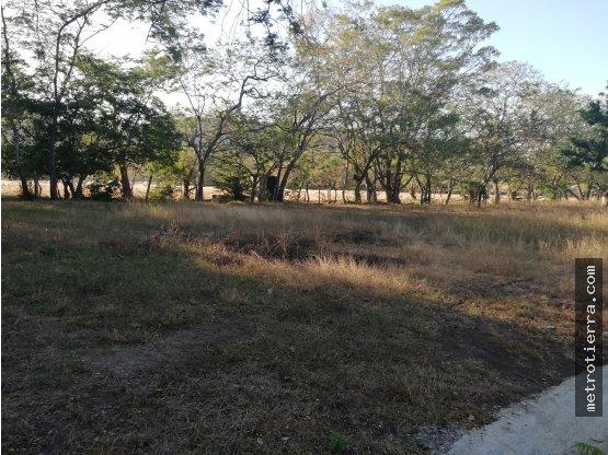 HERMOSOS LOTES EN TEMPATE DE SANTA CRUZ