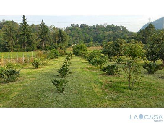 Magnífico Terreno con árboles frutales