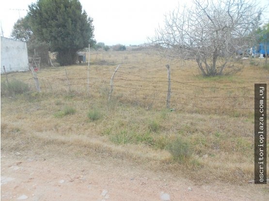 Terreno 9.757mt2 en camino al Paso Rivero, Tala