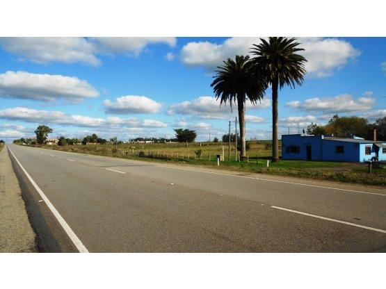 Terreno 36894 mt2 agroindustria logistica eventos