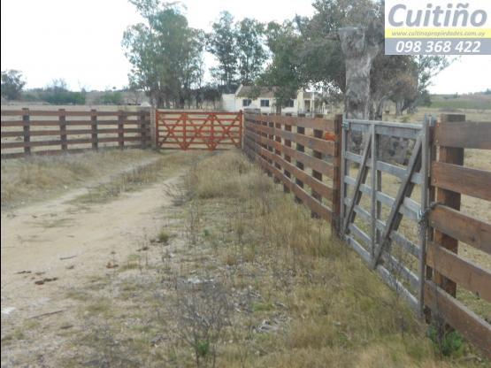 Campo 9 hectareas en Santa Rosa, Canelones