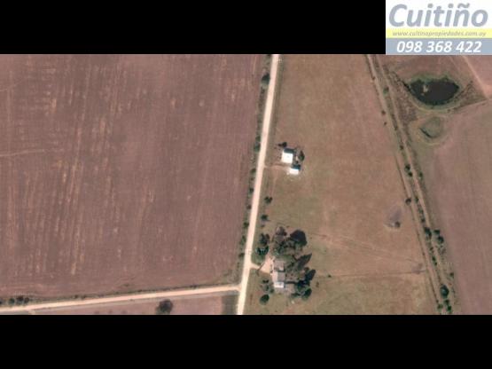 Campo en venta Florida. 106 has 100% agricola