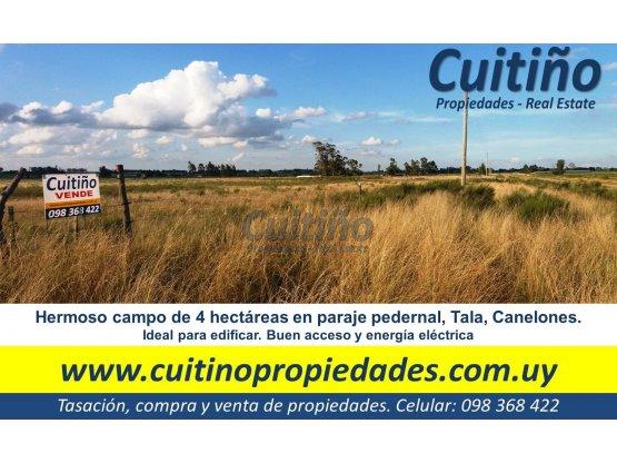Campo 4 has buen acceso y ute Tala Canelones