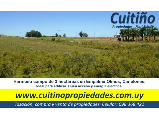 Campo de 3 hectareas en Empalme Olmos. Financio