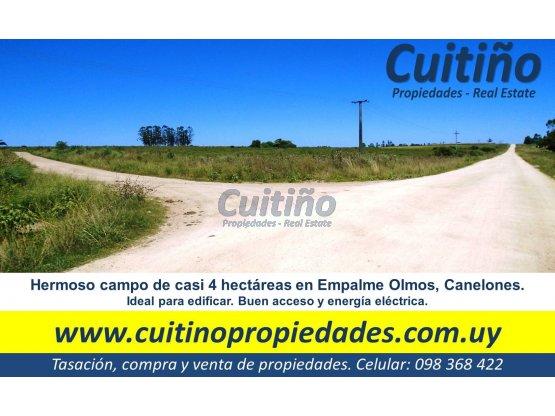 Campo de casi 4 hectareas en Empalme Olmos