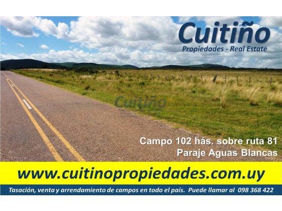 Campo 102 has en venta sobre ruta 81 Lavalleja