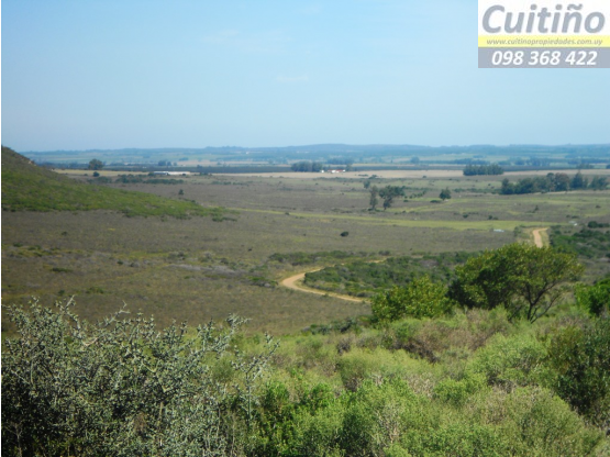 Campo 890 hectareas con 4 cerros en Lavalleja