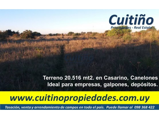 Terreno 20.516 mt2 en Casarino. Ideal para empresa
