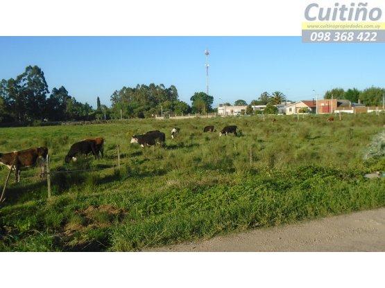 Muy lindo terreno de 406 metros cuadrados en Tala