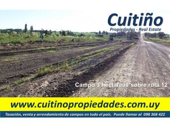 Campo 3 has. sobre ruta 12 ideal para vivienda