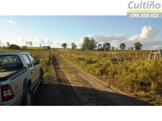 Campo 3 hectareas con arroyo en Tala, Canelones