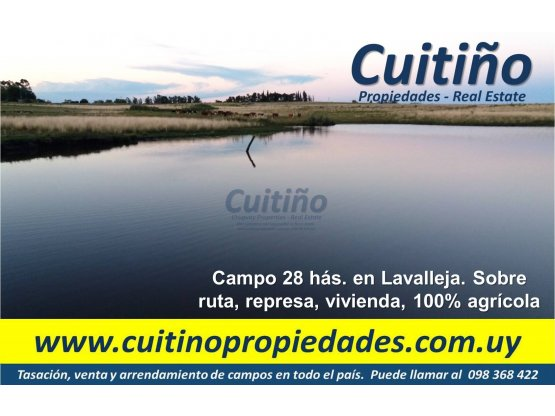 Campo 28 has. sobre ruta en Lavalleja