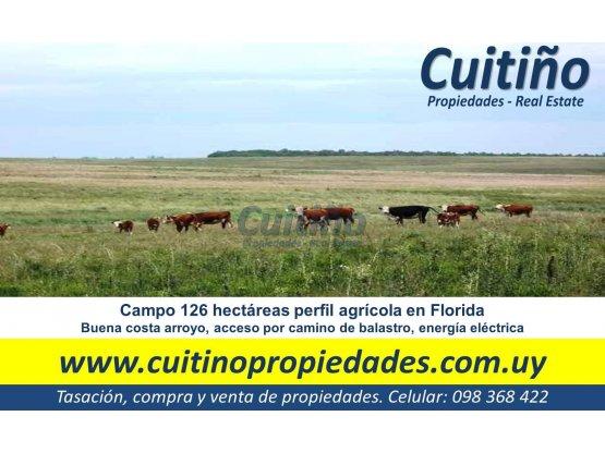 Campo 126 has agricola muy bueno en Florida