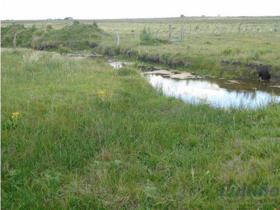 Campo 6 y 1/2 hectareas en Tala, Canelones
