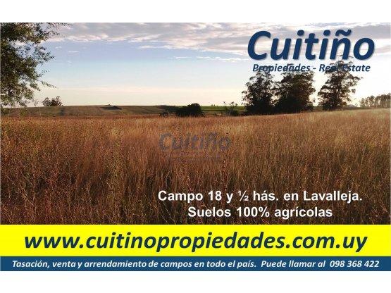 Campo 18 1/2 has. 100% agricola en Lavalleja