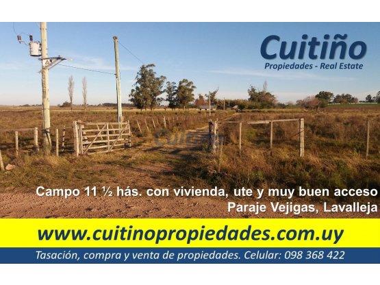 Hermoso campo 11 1/2 has. en Lavalleja