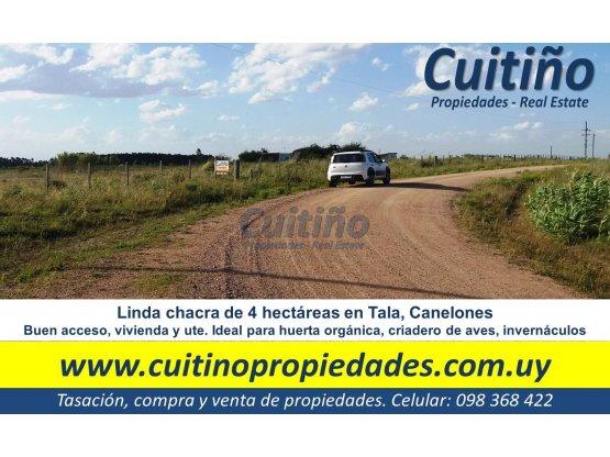 Campo chacra de 4 has en Tala Canelones