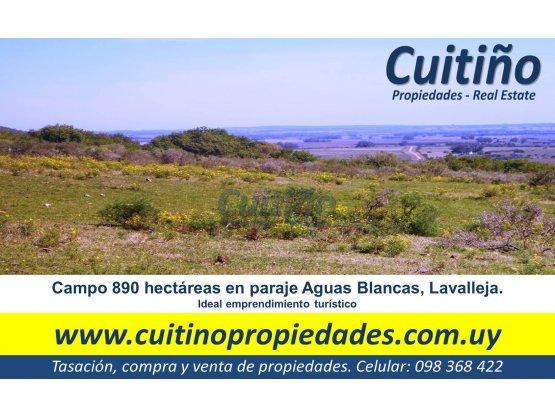 Campo 890 has en Lavalleja con 4 cerros