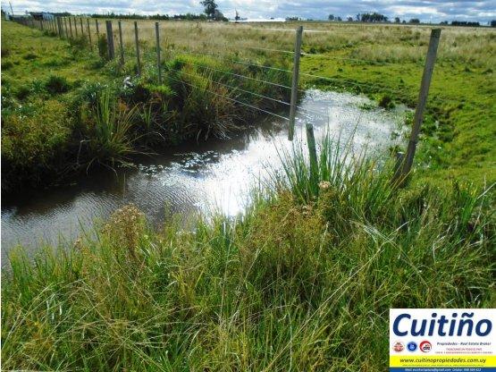 Campo 8 y 1/2 has. ideal granja autosustentable