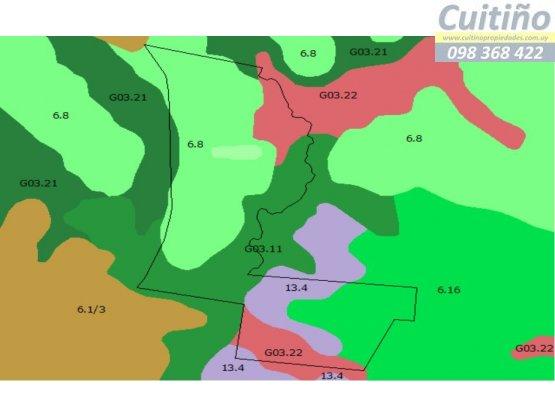 Vendo campo 374 hectareas en Cerro Largo