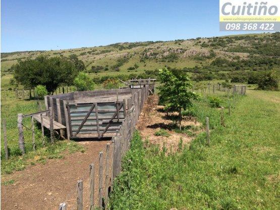 Campo en venta 1699 hás. en Lavalleja Uruguay